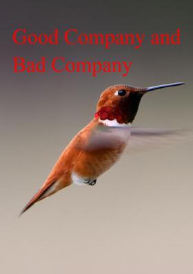 Good Company and Bad Company