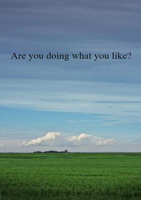 Are You Doing What You Like?