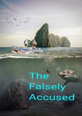 The Falsely Accused