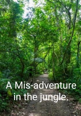 A Mis-adventure In The Jungle