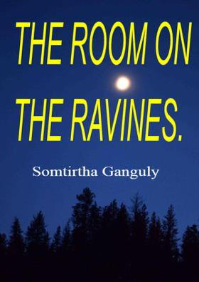 The Room On The Ravines