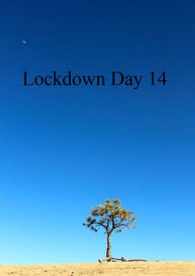 Lockdown Day 14