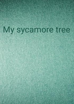 My Sycamore Tree