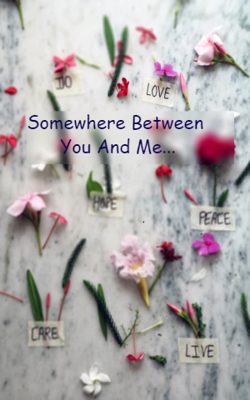 Somewhere Between You And Me...
