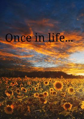 Once In Life...