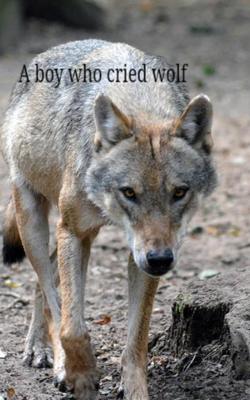 A Boy Who Cried Wolf