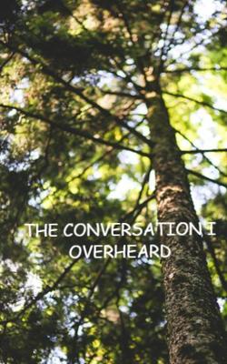 The Conversation I Overheard