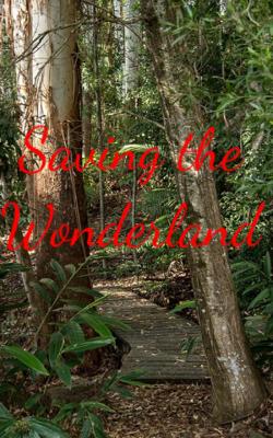 Saving the Wonderland
