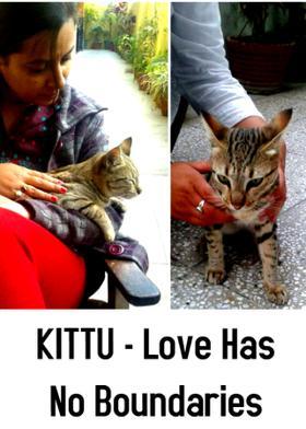 KITTU - Love Has No Boundaries