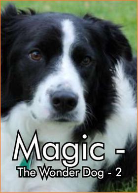 Magic - The Wonder Dog - 2
