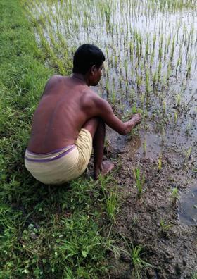 रुदन शेतकऱ्याच...!