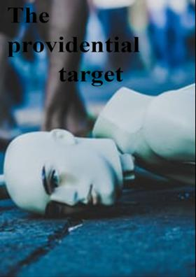 The Providential Target