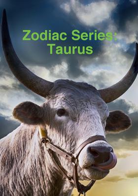 Zodiac Series: Taurus