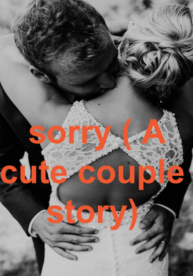 sorry ( A cute couple  story)