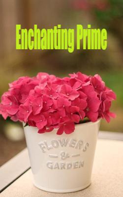 Enchanting Prime