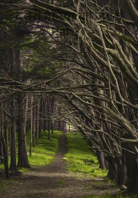 दूसरी दुनिया का जंगल Part-1