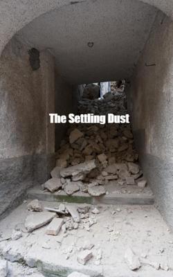 The Settling Dust