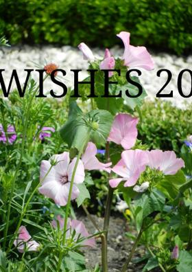 Wishes 2020