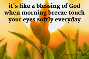 it's like a blessing of God when morning breeze touch your eyes softly everyday