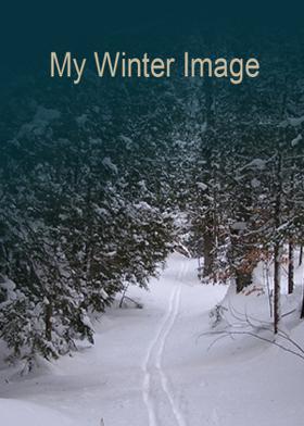 My Winter Image