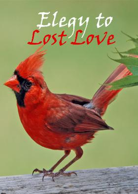 Elegy to Lost Love