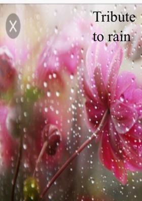 Tribute To Rain