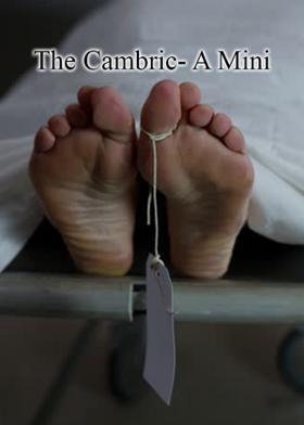 The Cambric- A Mini Saga