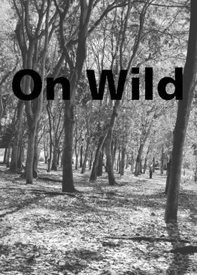 On Wild