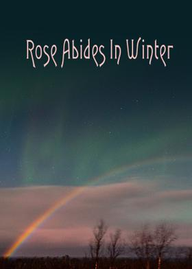 Rose Abides In Winter
