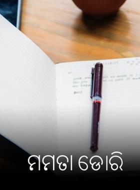 My Little Journal