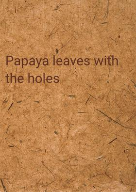 Papaya Leaves With The Holes