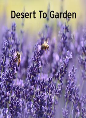 Desert To Garden