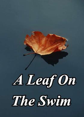 A Leaf On The Swim