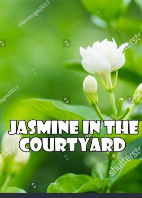 Jasmine In The Courtyard
