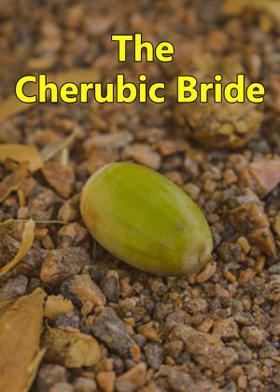 The Cherubic Bride