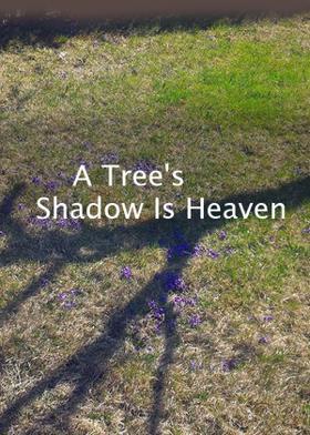 A Tree's Shadow Is Heaven