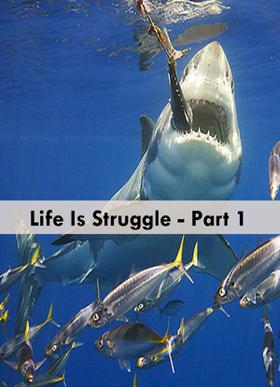 Life Is Struggle  - Part 1