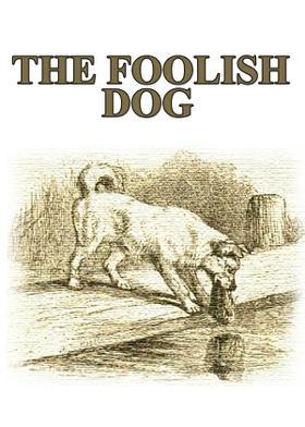 The Foolish Dog