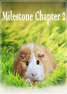 Milestone Chapter 2