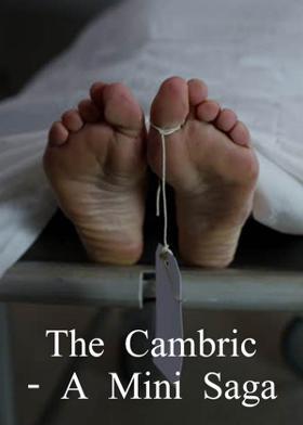 The Cambric - A Mini Saga