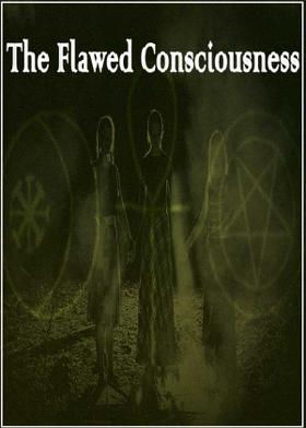 The Flawed Consciousness