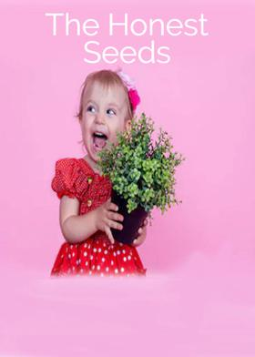 The Honest Seeds